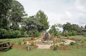 garden_small